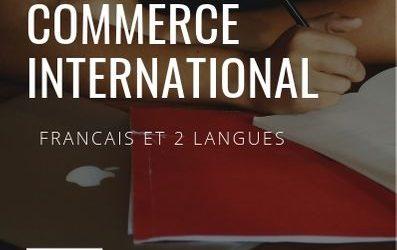 Diplôme en commerce international FITT